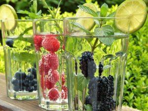 Fettverbrennung ankurbeln mit Beeren im Glas Wasser