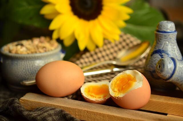 positiven Effekt auf einen Stoffwechsel (Eier)