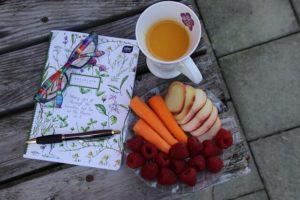 schnelle Diät Tagebuch